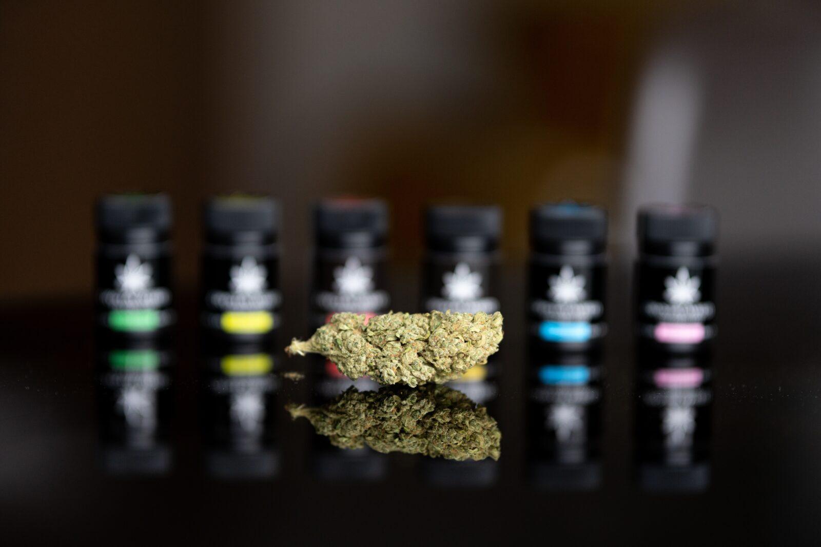 Медицинская марихуана: чем отличаются CBD и THC